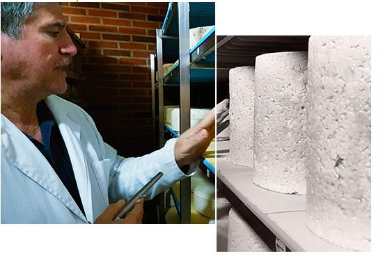 Qava maestro afinador de quesos