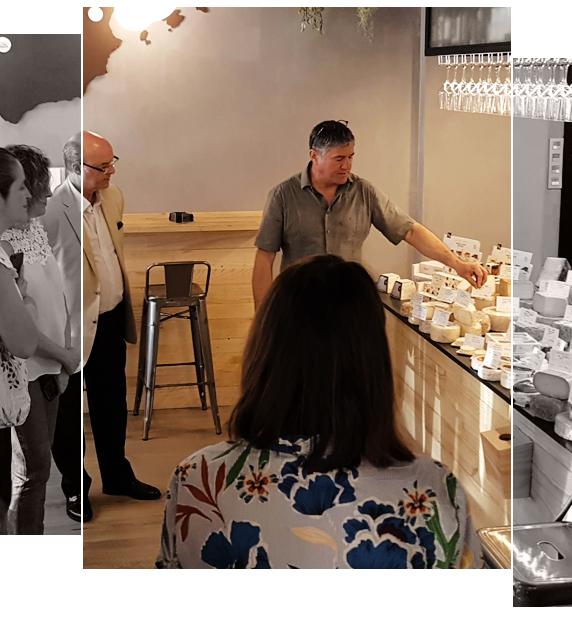 Servicios talleres qava de quesos
