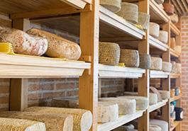 Gran variedad de quesos en quesería QAVA